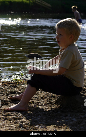 Deep in Thought at Bolton Abbey - Stock Photo