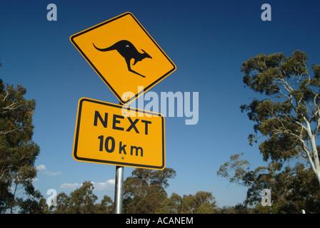 Kangaroo traffic sign, Australia - Stock Photo