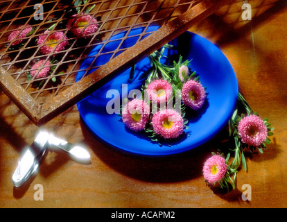 Pink Flowers in a Blue Bowl - Stock Photo