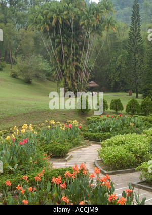 VIEW OF  FLOWER BORDERS AND BOTANICAL  GARDENS, PENANG HILL, ,  PENANG,  MALAYSIA, - Stock Photo