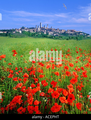 IT - TUSCANY: Historic town of San Gimignano - Stock Photo