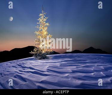 CH - ENGADIN:  Alpine Christmas Scene - Stock Photo
