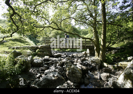 A walker crosses a wooden footbridge over a river on the banks of Ullswater lake in Cumbria England - Stock Photo