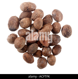 A group of Shea Nuts, from Gambia - Stock Photo