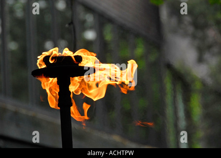 Decorative flaming torch - Stock Photo