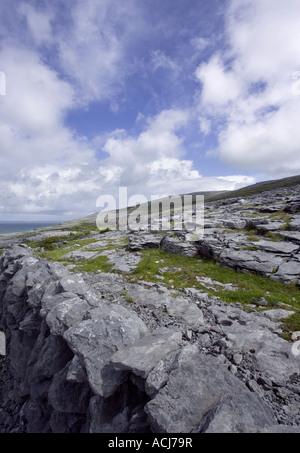 Burren, Fanore, Black Head, West of Ireland Burren way in Ireland - Stock Photo