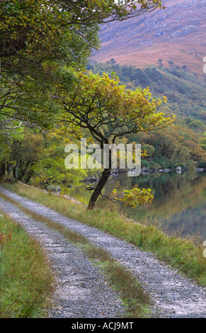 Track beside Lough Veagh in Glenveagh National Park, County Donegal, Ireland. - Stock Photo