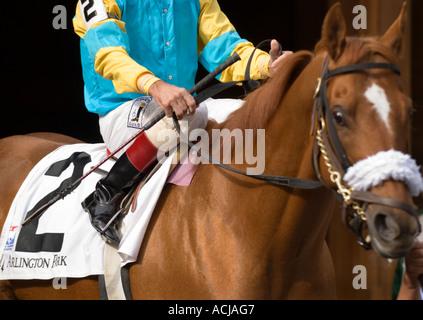 Horse & Jockey Cloe-up - Stock Photo