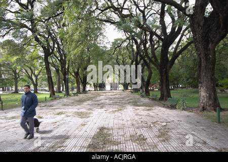 The park at the Plaza San martin Square with big black trees, a man walking by with a shopping cart, otherwise the - Stock Photo