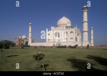 The Taj Mahal in beautiful early morning sunshine with a deep blue sky behind Agra Uttar Pradesh India - Stock Photo