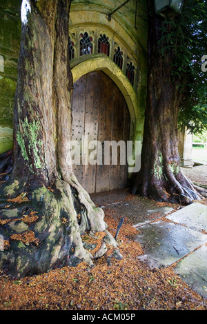 Two yew trees that surround St Edward's Church north door at Stow on the Wold , Cotswolds , England - Stock Photo