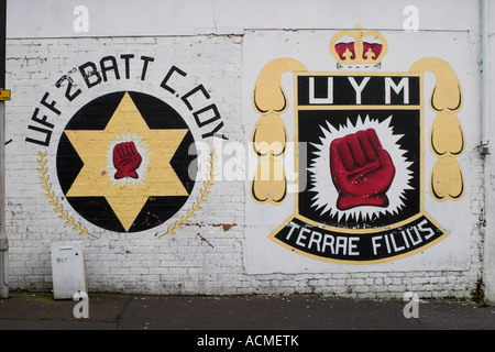 UFF and UYM Murals Dowing Street off Shankill Road - Stock Photo
