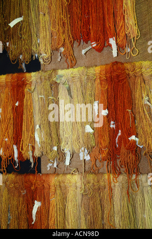 Hand dyed wool drying dyed with Australian eucalyptus leaves boiled in water dsc 2098 - Stock Photo
