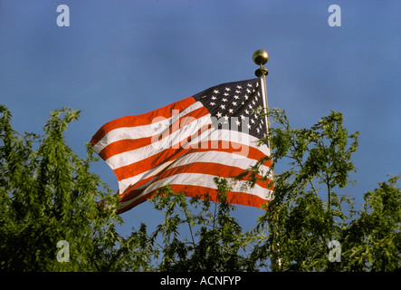 USA US America American Six Flags over Texas - Stock Photo