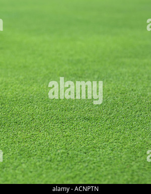 the finely manicured green grass or turf from a golf hole green - Stock Photo