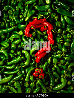 Peppers question mark using both red and green peppers - Stock Photo