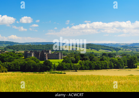 The 15th Century ruin of Raglan Castle viewed over a wheat field at Raglan in Monmouthshire, Wales on a sunny summers - Stock Photo