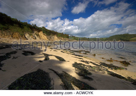 This image was taken very close to the mouth of the River Erme in the South Hams area of Devon - Stock Photo