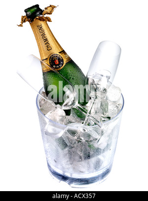 CHAMPAGNE IN ICE BUCKET CUT OUT - Stock Photo