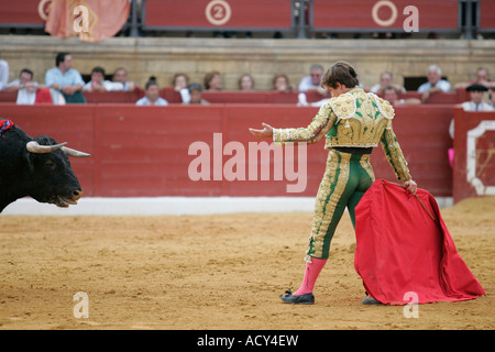 Julian -El Juli- Lopez, a Spanish matador during a bullfight, Spain - Stock Photo