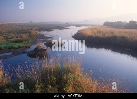 Dyfed Ceredigion Near Tregaron Cors Caron Nature Reserve Environment Marsh - Stock Photo