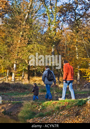 Two and a half men. Three generations walking in the New Forest national park. Hampshire. Family outing. UK - Stock Photo