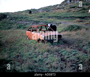 burned out motor car abandoned on rough ground - Stock Photo