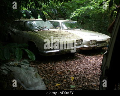 Abandoned car - Reliant Scimitars rot into the ground in woodland - Stock Photo
