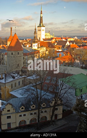 Vertical wide angle elevated view of St Olaf's Church (Oleviste Kirik) across terracotta roofs of the Old Town. - Stock Photo