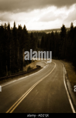 Road through Yellowstone National Park. Montana State. USA - Stock Photo