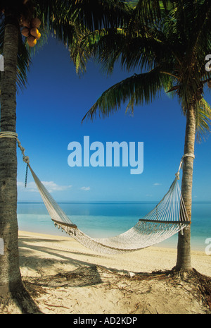 Hammock and palm trees on Beach at the The Inn at Bahama Bay in Grand Bahamas in the Caribbean - Stock Photo