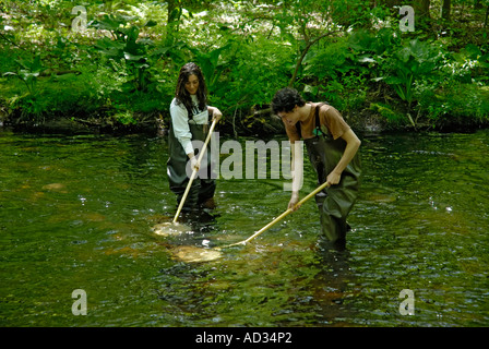 Teenagers high school students using net sampling river water for fish and invertebrate biological indicators of - Stock Photo