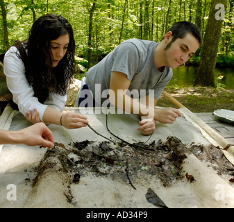 Teenage boy and girl picking invertebrates out of 'kick-seine' net for stream water quality investigation - Stock Photo