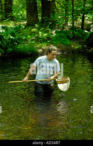Teenage girl using net sampling river water for fish and invertebrate biological indicators of water quality - Stock Photo