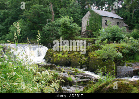 Cenarth Mill on the banks of the River Teifi, Carmarthenshire, South Wales - Stock Photo