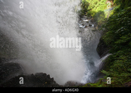Waterfall in La Paz Waterfall Gardens on lower slopes of Poas Volcano in Central Valley and Highlands Province Costa - Stock Photo