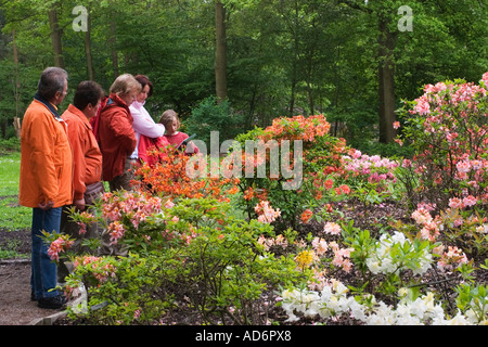 rhododendron park in bremen germany may 2006 stock photo royalty free image 11765843 alamy. Black Bedroom Furniture Sets. Home Design Ideas
