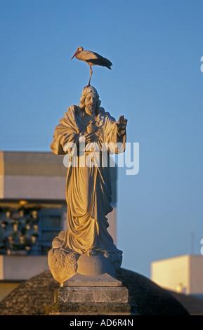 European White Stork Ciconia ciconia On statue of Jesus Spain - Stock Photo