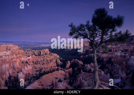 Evening moonrise over Bryce Canyon Bryce Canyon National Park UTAH - Stock Photo