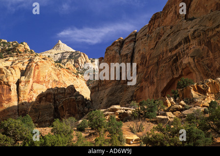 Afternoon light on cliffs at entrance to the Grand Wash Capitol Reef National Park UTAH - Stock Photo