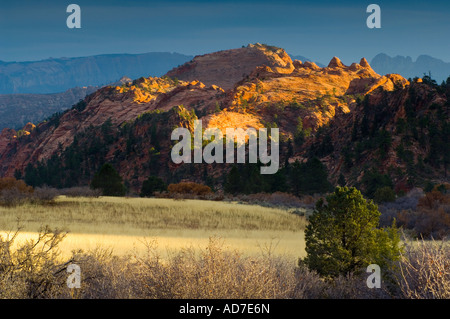 Sunset light through storm clouds on red rocks near Lee Valley Kolob Section Zion National Park Utah - Stock Photo