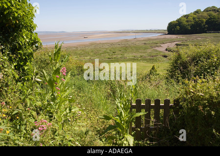 Wales Carmarthenshire Carmarthen Laugharne coast below the castle - Stock Photo