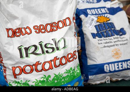 paper bags sacks of new season irish potatoes queens for sale - Stock Photo