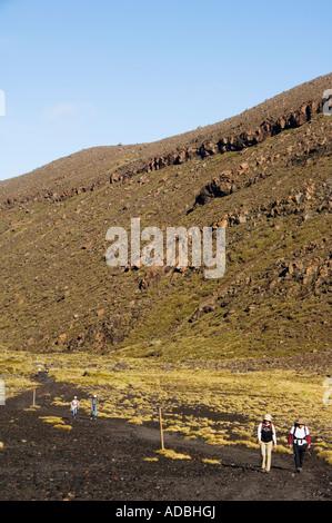 New Zealand North Island Taupo Volcanic Zone Tongariro National Park Mt Tongariro Crossing - Stock Photo