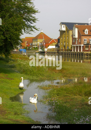 Faversham Creek, Near the Front Brents, Faversham, Kent, England, UK, United Kingdom, Great Britain, Europe, Sept - Stock Photo