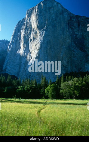 El Capitan iconic monolith in evening light Yosemite National Park Valley Sierra Nevada California USA - Stock Photo