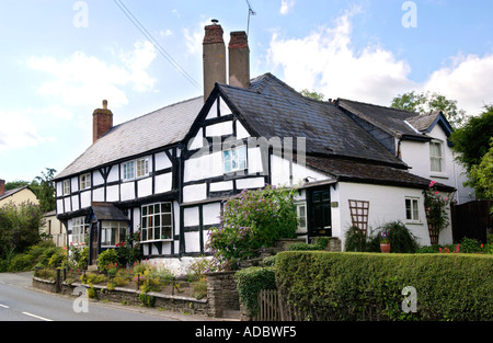 Black and white timber framed house dating from the post medieval period 16th century in Pembridge Herefordshire - Stock Photo