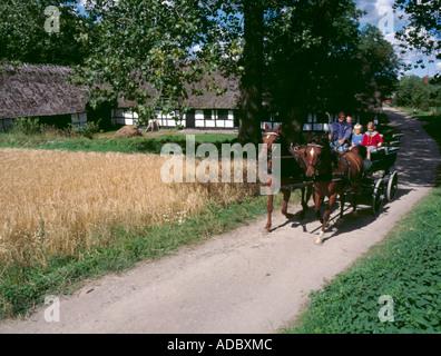 Horse and cart ride, Den Fynske Landsby, Funnen village (south of Odense), Fyn (Funen), Denmark - Stock Photo