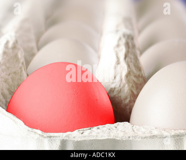eggs in the box - Stock Photo