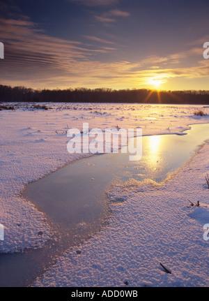 Huntley meadows frozen. - Stock Photo